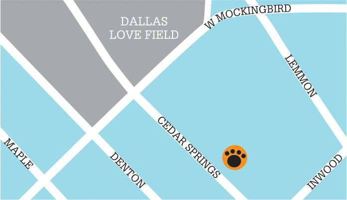 dallas-map