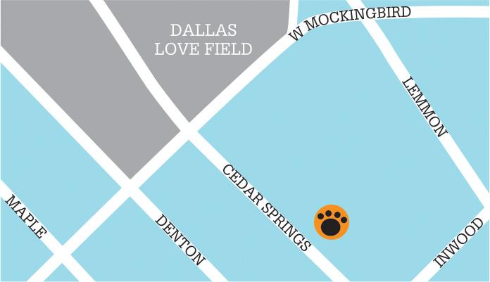 dallas-map